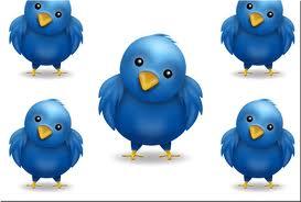 Twitter onderzoeksresultaten