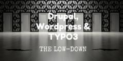 Banner Drupal Wordpress en TYPO3: the Low-Down